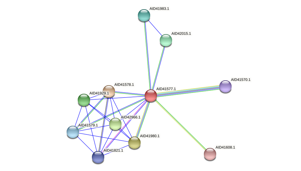 AID41577.1 protein (Staphylococcus xylosus) - STRING interaction network
