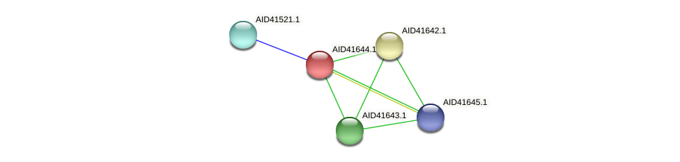 AID41644.1 protein (Staphylococcus xylosus) - STRING interaction network