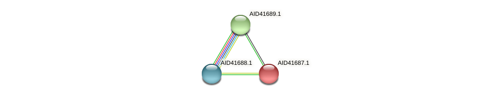 AID41687.1 protein (Staphylococcus xylosus) - STRING interaction network