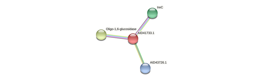 AID41733.1 protein (Staphylococcus xylosus) - STRING interaction network
