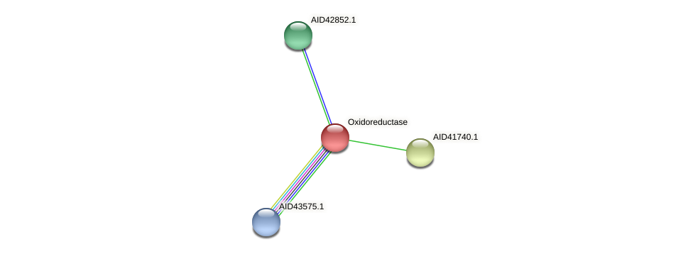 AID41741.1 protein (Staphylococcus xylosus) - STRING interaction network