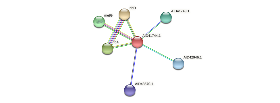 AID41744.1 protein (Staphylococcus xylosus) - STRING interaction network