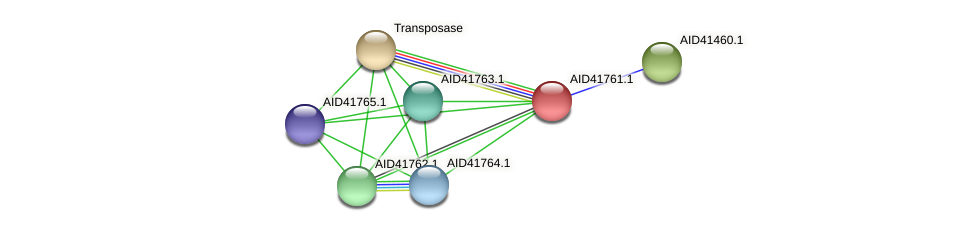AID41761.1 protein (Staphylococcus xylosus) - STRING interaction network
