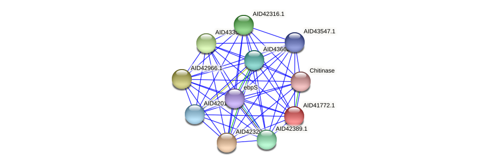 AID41772.1 protein (Staphylococcus xylosus) - STRING interaction network