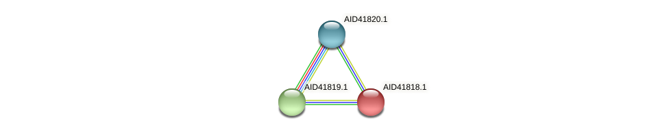 AID41818.1 protein (Staphylococcus xylosus) - STRING interaction network