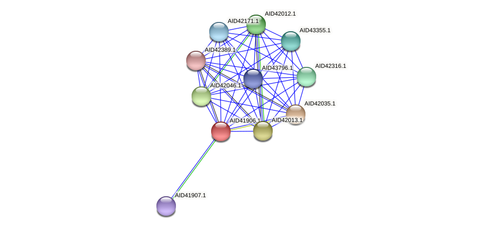 AID41906.1 protein (Staphylococcus xylosus) - STRING interaction network