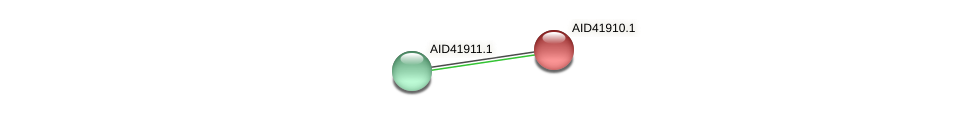 AID41910.1 protein (Staphylococcus xylosus) - STRING interaction network