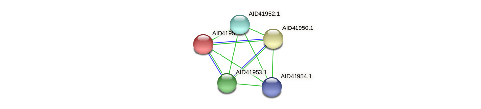 AID41951.1 protein (Staphylococcus xylosus) - STRING interaction network