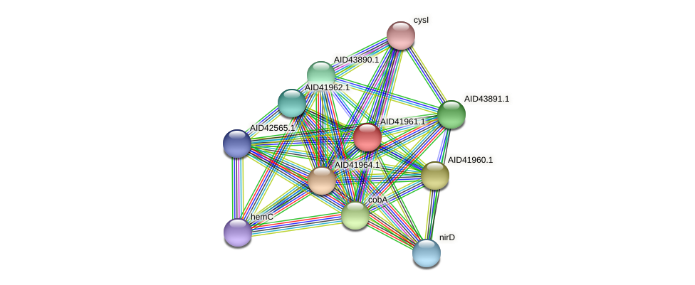 AID41961.1 protein (Staphylococcus xylosus) - STRING interaction network