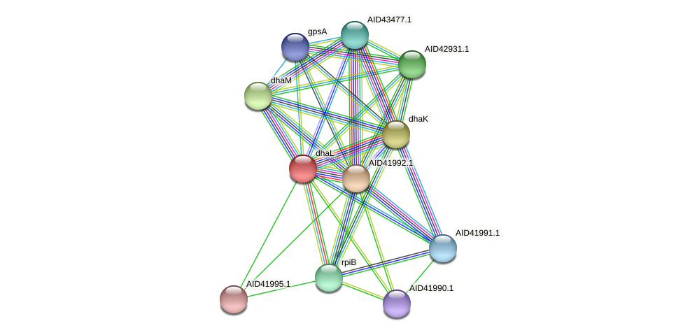 AID41993.1 protein (Staphylococcus xylosus) - STRING interaction network