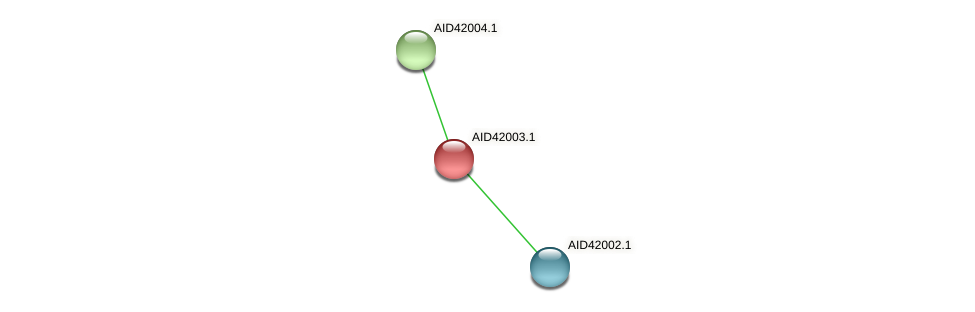 AID42003.1 protein (Staphylococcus xylosus) - STRING interaction network