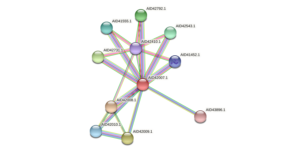 AID42007.1 protein (Staphylococcus xylosus) - STRING interaction network