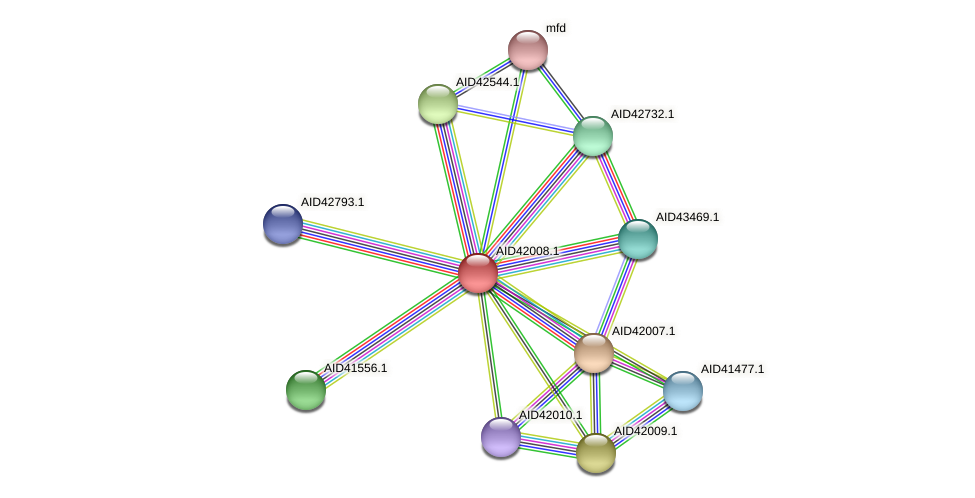 AID42008.1 protein (Staphylococcus xylosus) - STRING interaction network