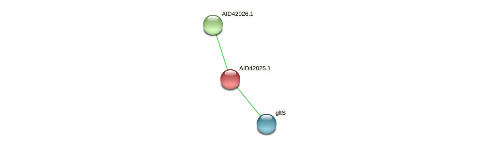 AID42025.1 protein (Staphylococcus xylosus) - STRING interaction network