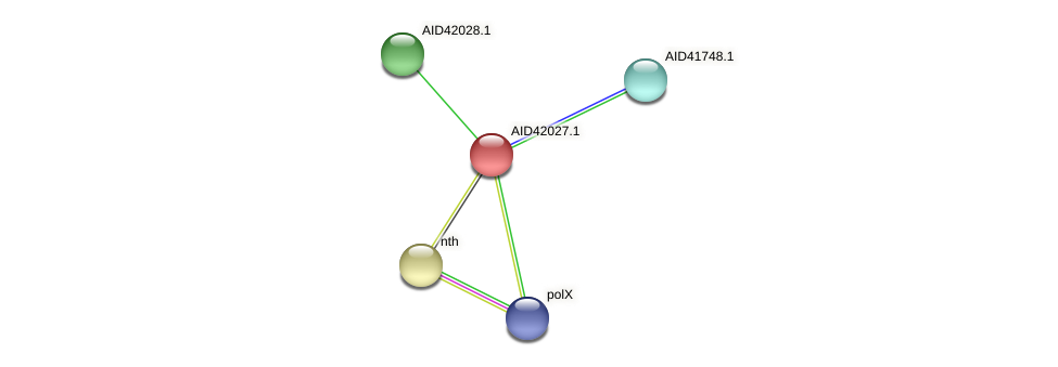 AID42027.1 protein (Staphylococcus xylosus) - STRING interaction network