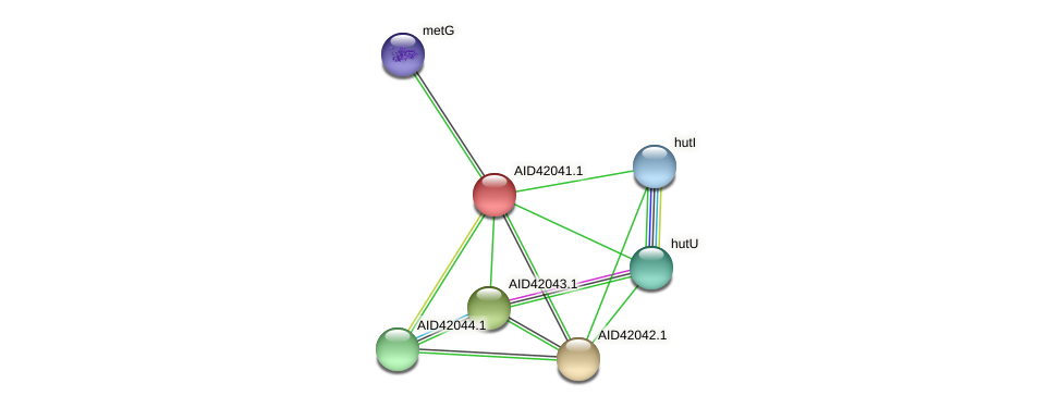 AID42041.1 protein (Staphylococcus xylosus) - STRING interaction network