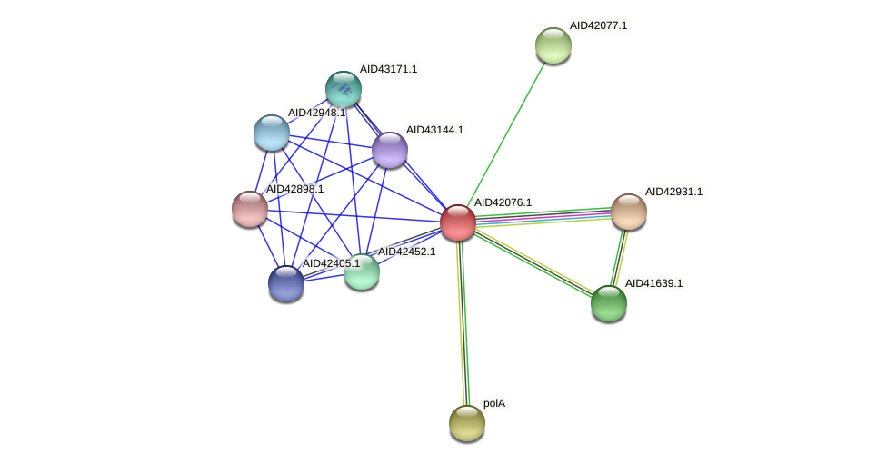 AID42076.1 protein (Staphylococcus xylosus) - STRING interaction network
