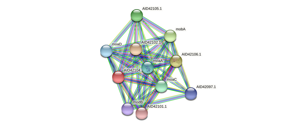 AID42104.1 protein (Staphylococcus xylosus) - STRING interaction network
