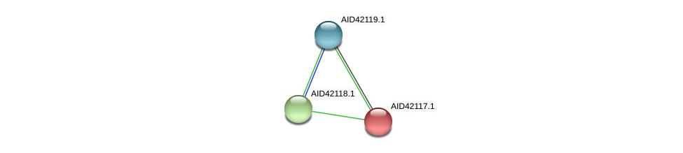 AID42117.1 protein (Staphylococcus xylosus) - STRING interaction network
