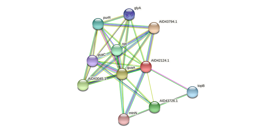 AID42124.1 protein (Staphylococcus xylosus) - STRING interaction network