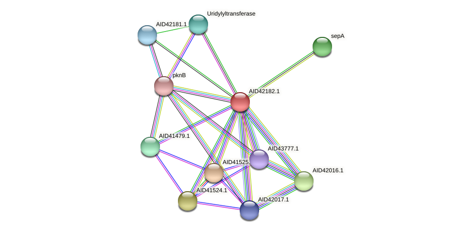 AID42182.1 protein (Staphylococcus xylosus) - STRING interaction network