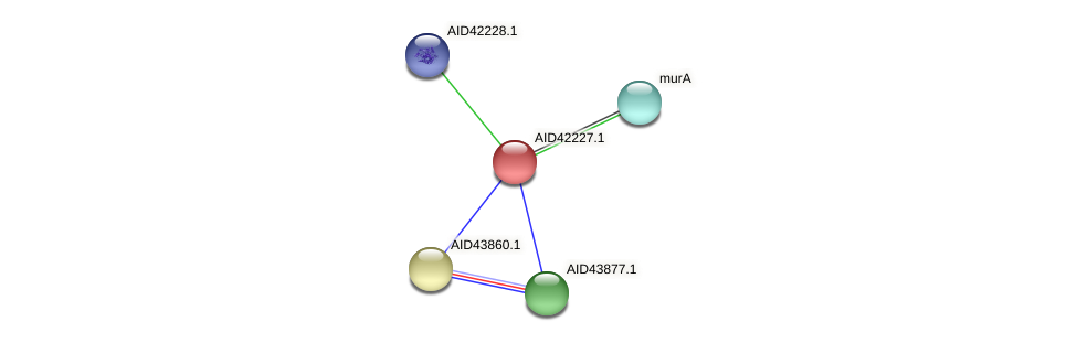 AID42227.1 protein (Staphylococcus xylosus) - STRING interaction network