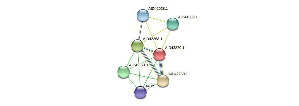 AID42270.1 protein (Staphylococcus xylosus) - STRING interaction network