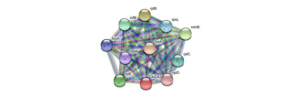 AID42292.1 protein (Staphylococcus xylosus) - STRING interaction network