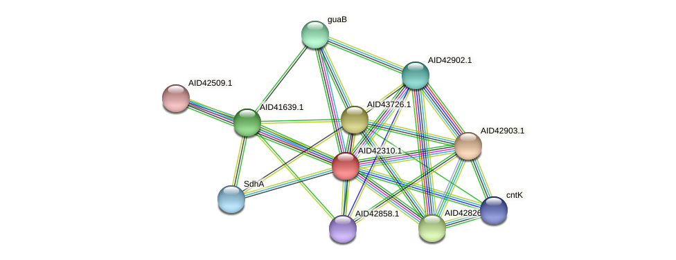 AID42310.1 protein (Staphylococcus xylosus) - STRING interaction network