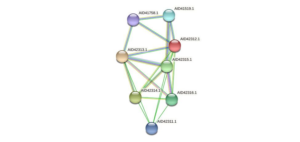 AID42312.1 protein (Staphylococcus xylosus) - STRING interaction network