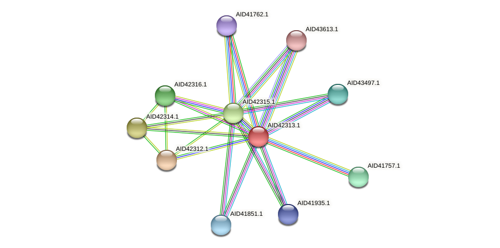AID42313.1 protein (Staphylococcus xylosus) - STRING interaction network