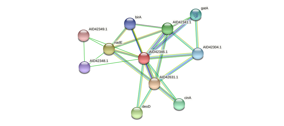 AID42346.1 protein (Staphylococcus xylosus) - STRING interaction network