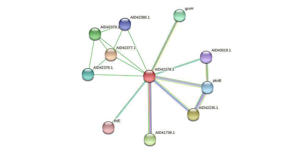 AID42378.1 protein (Staphylococcus xylosus) - STRING interaction network