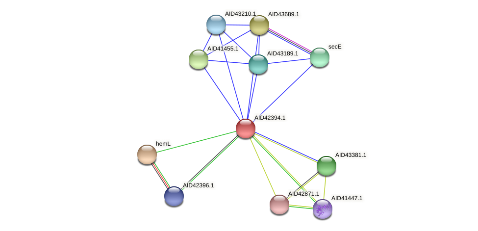AID42394.1 protein (Staphylococcus xylosus) - STRING interaction network