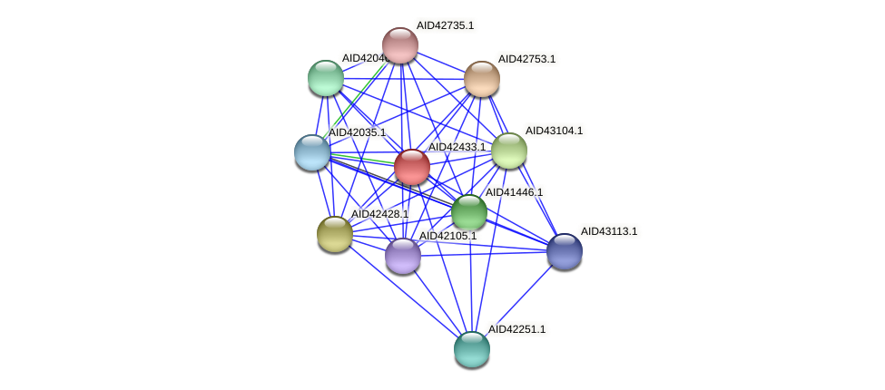 AID42433.1 protein (Staphylococcus xylosus) - STRING interaction network