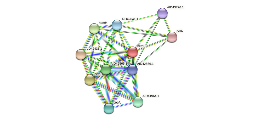 hemE protein (Staphylococcus xylosus) - STRING interaction network