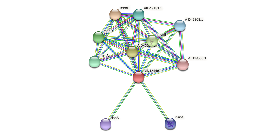AID42446.1 protein (Staphylococcus xylosus) - STRING interaction network