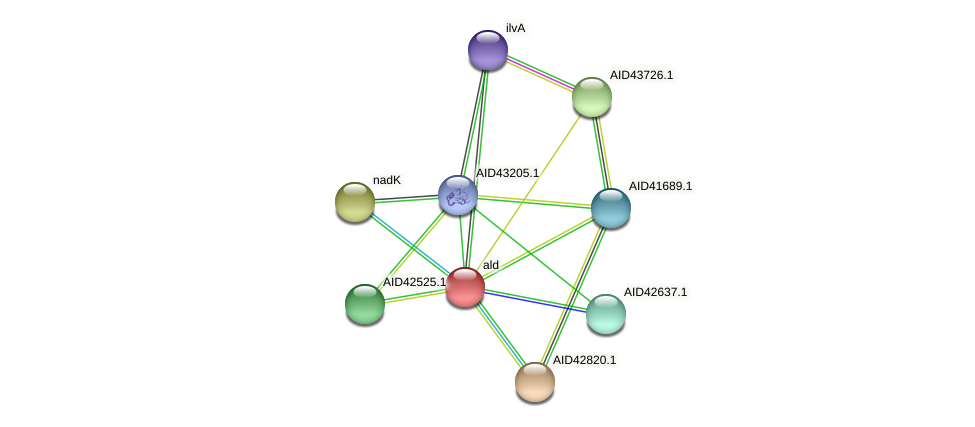 AID42526.1 protein (Staphylococcus xylosus) - STRING interaction network