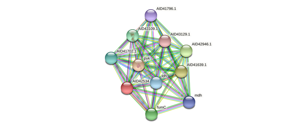 AID42534.1 protein (Staphylococcus xylosus) - STRING interaction network