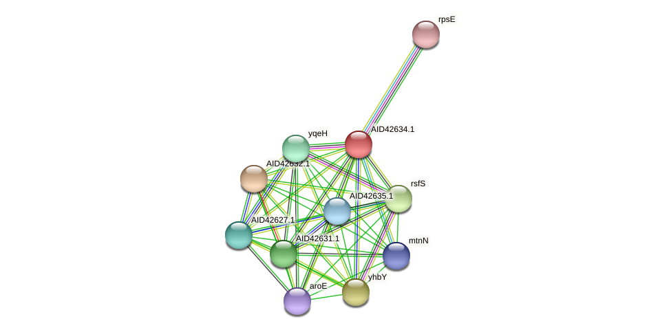 AID42634.1 protein (Staphylococcus xylosus) - STRING interaction network