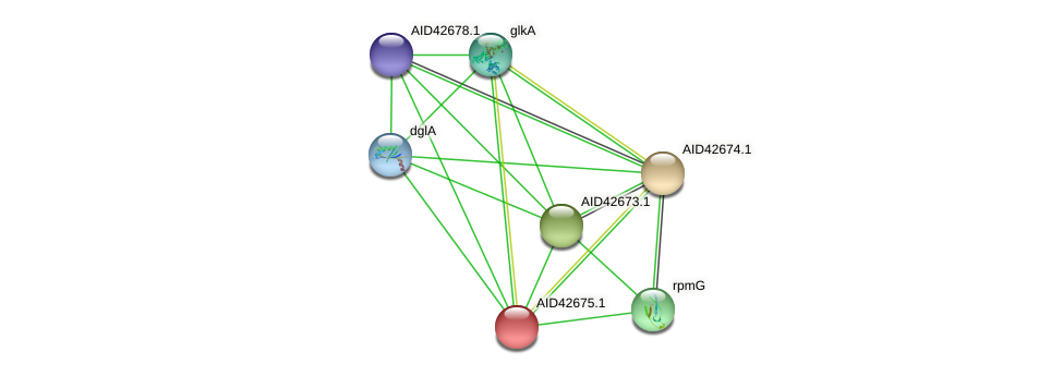 AID42675.1 protein (Staphylococcus xylosus) - STRING interaction network