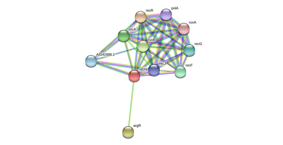 AID42702.1 protein (Staphylococcus xylosus) - STRING interaction network