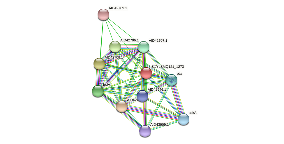 buk protein (Staphylococcus xylosus) - STRING interaction network