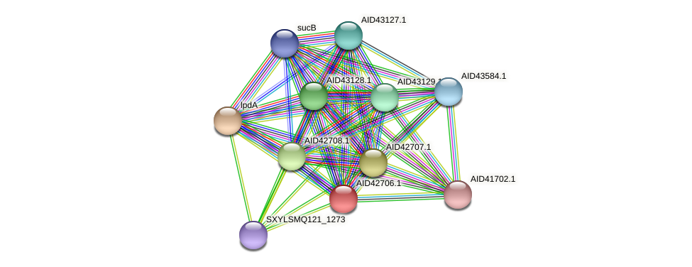 AID42706.1 protein (Staphylococcus xylosus) - STRING interaction network