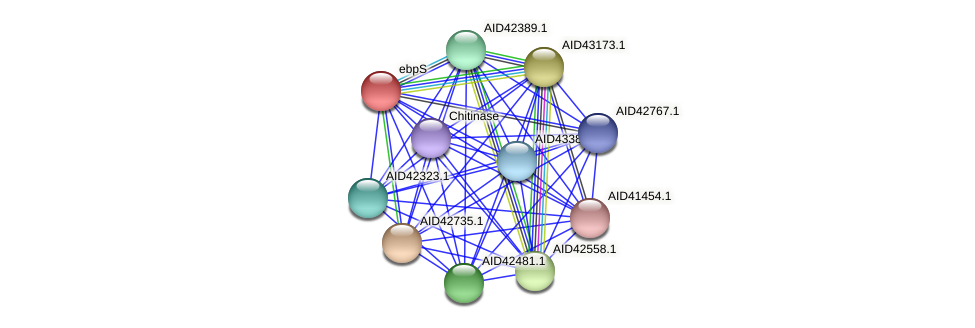 AID42737.1 protein (Staphylococcus xylosus) - STRING interaction network