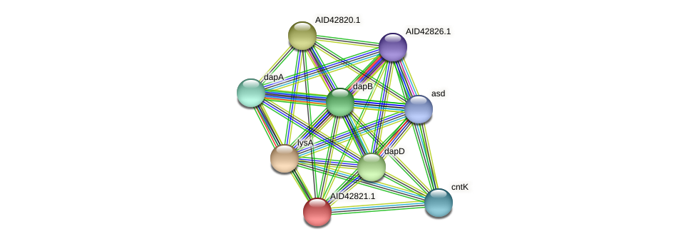 AID42821.1 protein (Staphylococcus xylosus) - STRING interaction network