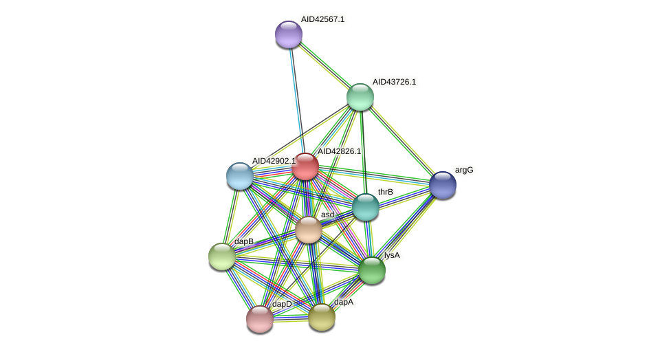 AID42826.1 protein (Staphylococcus xylosus) - STRING interaction network