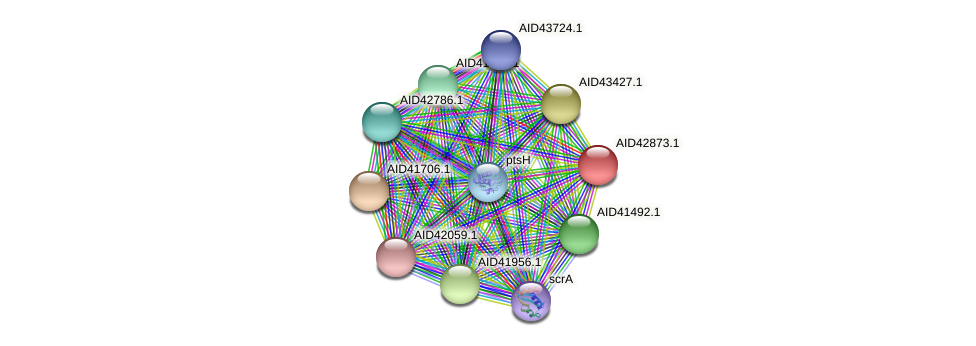 AID42873.1 protein (Staphylococcus xylosus) - STRING interaction network