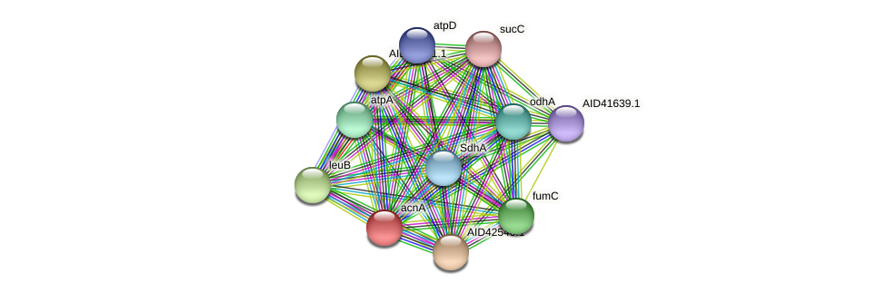 AID42880.1 protein (Staphylococcus xylosus) - STRING interaction network