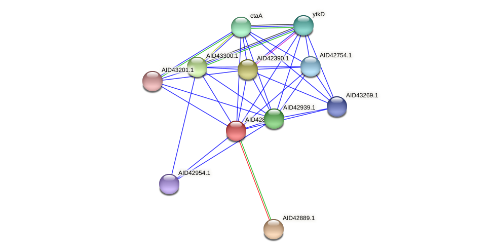 AID42885.1 protein (Staphylococcus xylosus) - STRING interaction network